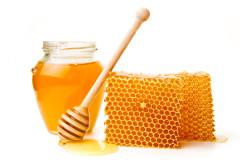 Продукты пчеловодства при остеопорозе тазобедренного сустава