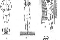 Специальные упражнения для активного вытяжения позвоночника