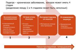4 стадии развития подагры