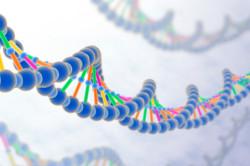 Генетическая предрасположенность к остеохондрозу
