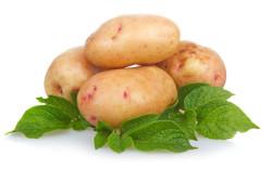 Картофель для лечения болей в коленном суставе