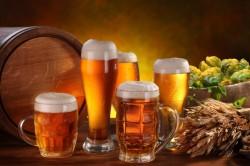 Вред пива при подагре