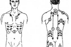 Схема массажа спины