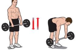 Соблюдение техники выполнения упражнений