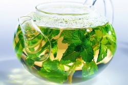 Травяные настойки для лечения подагры