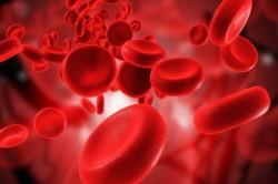 Недостаточное кровоснабжение - причина артроза